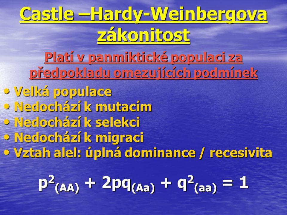 Castle –Hardy-Weinbergova zákonitost Velká populace Velká populace Nedochází k mutacím Nedochází k mutacím Nedochází k selekci Nedochází k selekci Ned