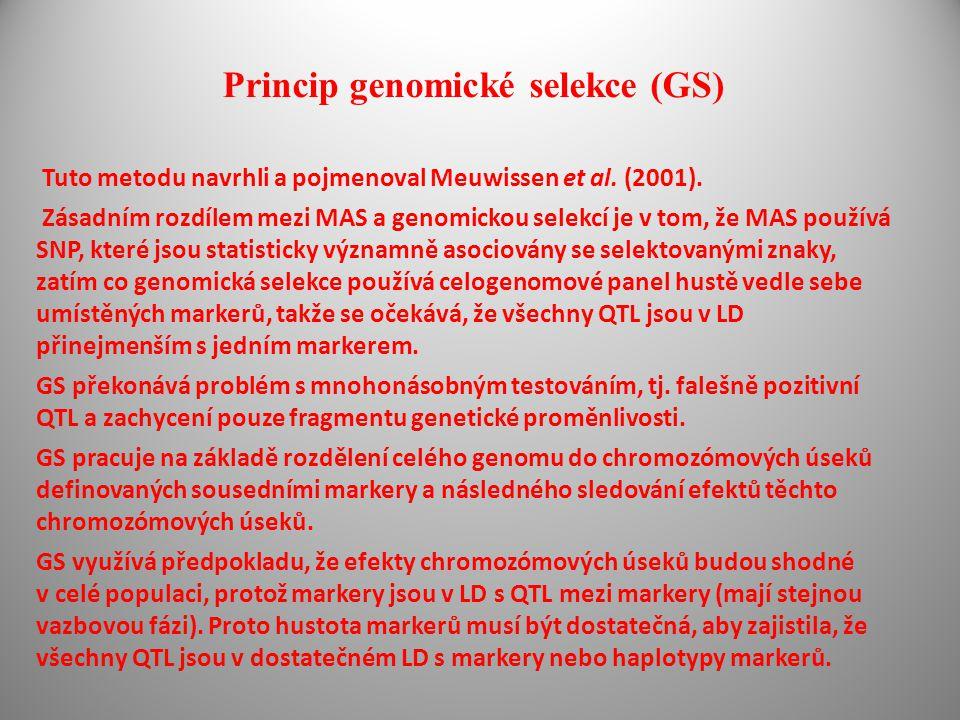Princip genomické selekce (GS) Tuto metodu navrhli a pojmenoval Meuwissen et al. (2001). Zásadním rozdílem mezi MAS a genomickou selekcí je v tom, že