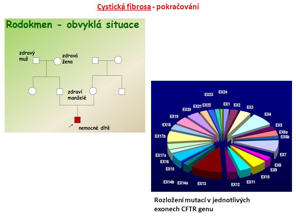 Rozložení mutací v jednotlivých exonech CFTR genu Cystická fibrosa - pokračování