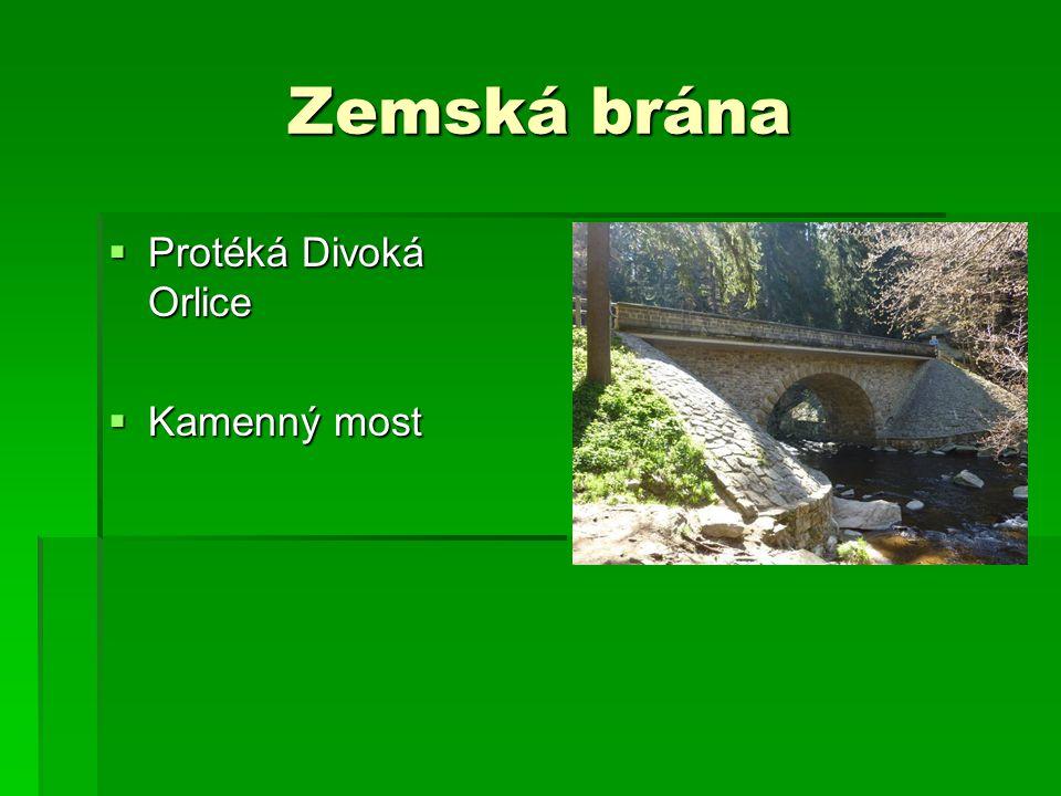 PR - Bukačka  vznik r. 1954  ochrana bukového lesa