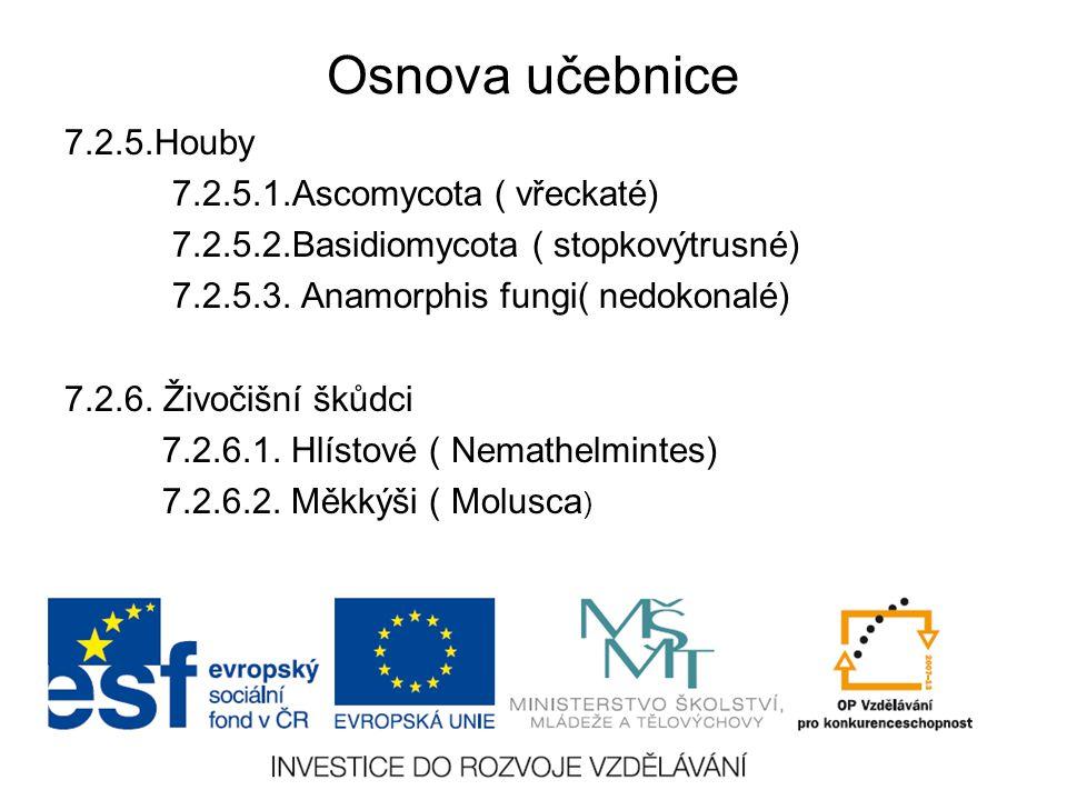 Osnova učebnice 7.2.5.Houby 7.2.5.1.Ascomycota ( vřeckaté) 7.2.5.2.Basidiomycota ( stopkovýtrusné) 7.2.5.3. Anamorphis fungi( nedokonalé) 7.2.6. Živoč