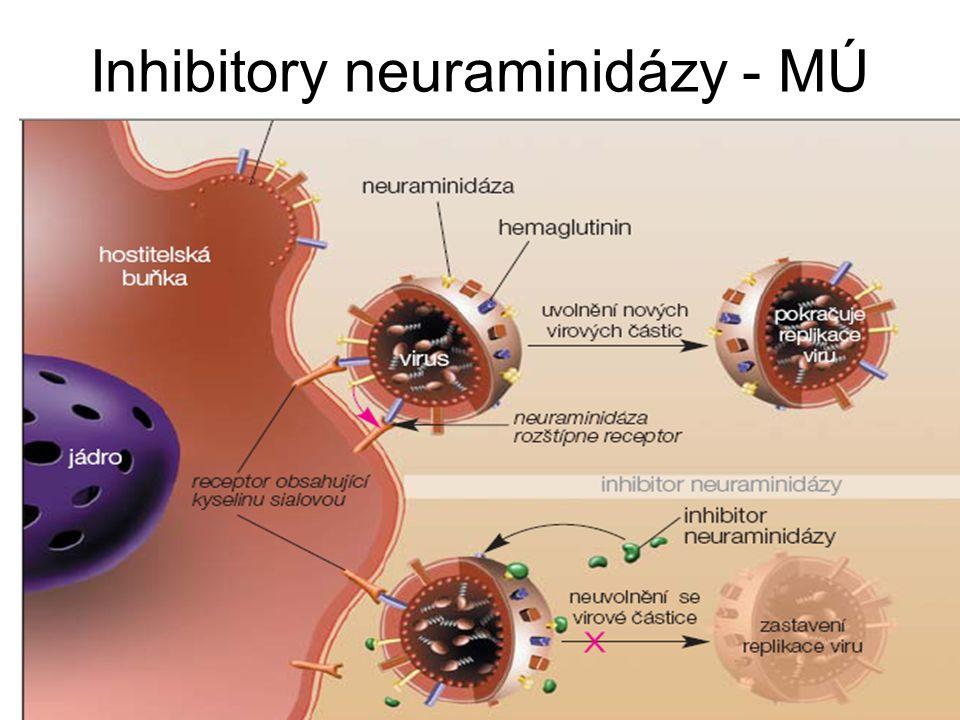 Inhibitory neuraminidázy - MÚ