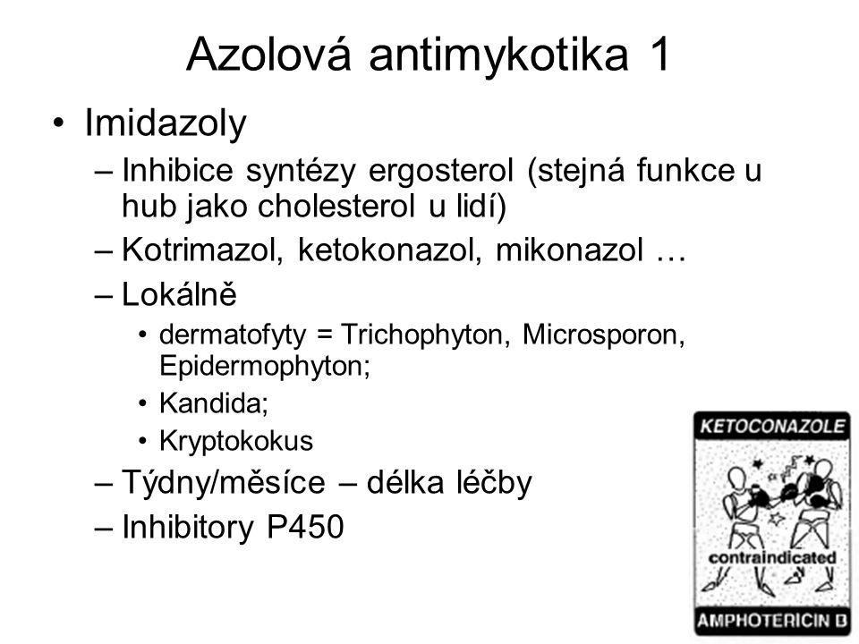 Azolová antimykotika 1 Imidazoly –Inhibice syntézy ergosterol (stejná funkce u hub jako cholesterol u lidí) –Kotrimazol, ketokonazol, mikonazol … –Lok