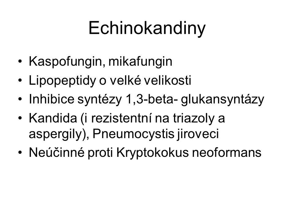 Echinokandiny Kaspofungin, mikafungin Lipopeptidy o velké velikosti Inhibice syntézy 1,3-beta- glukansyntázy Kandida (i rezistentní na triazoly a aspe