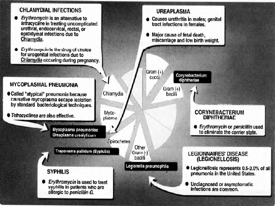 Rezistence Závažný problém (např.většina kmenů stafylokoků v nemocnicích).