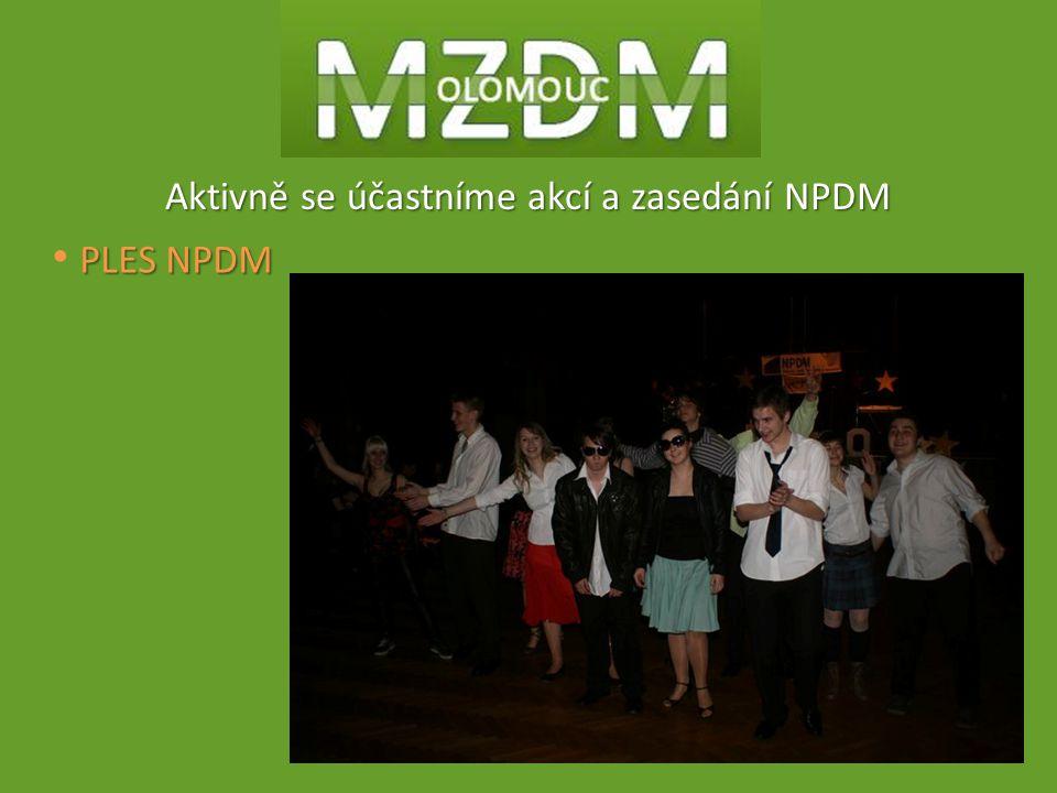Aktivně se účastníme akcí a zasedání NPDM PLES NPDM