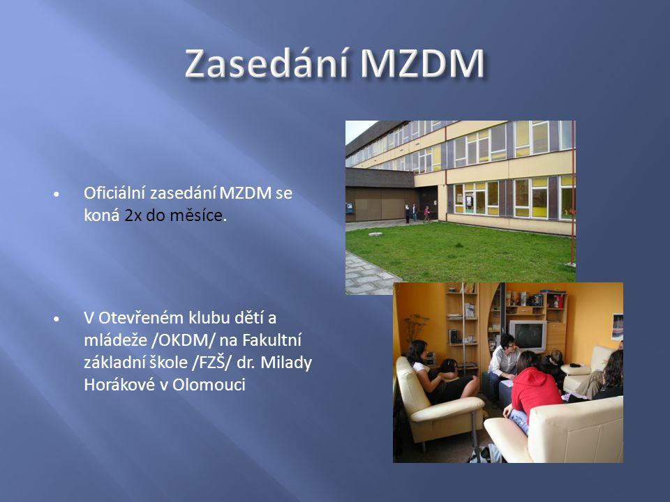 Oficiální zasedání MZDM se koná 2x do měsíce.