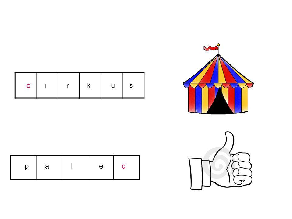 c i r k u s p a l e c