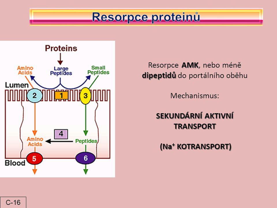 AMK dipeptidů Resorpce AMK, nebo méně dipeptidů do portálního oběhu Mechanismus: SEKUNDÁRNÍ AKTIVNÍ TRANSPORT (Na + KOTRANSPORT) (Na + KOTRANSPORT) C-
