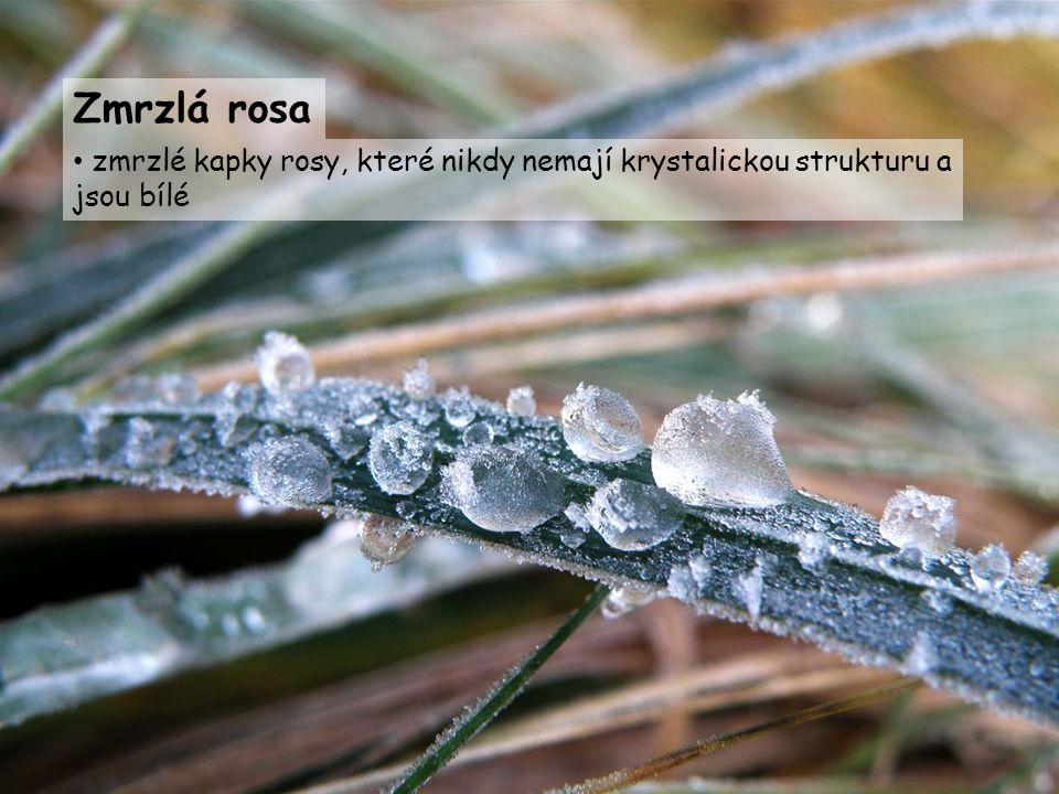 zmrzlé kapky rosy, které nikdy nemají krystalickou strukturu a jsou bílé Zmrzlá rosa