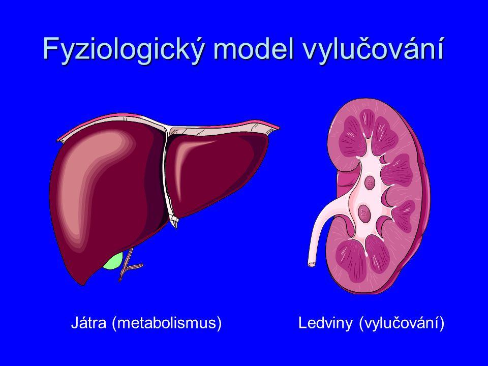 Fyziologický model vylučování Játra (metabolismus)Ledviny (vylučování)