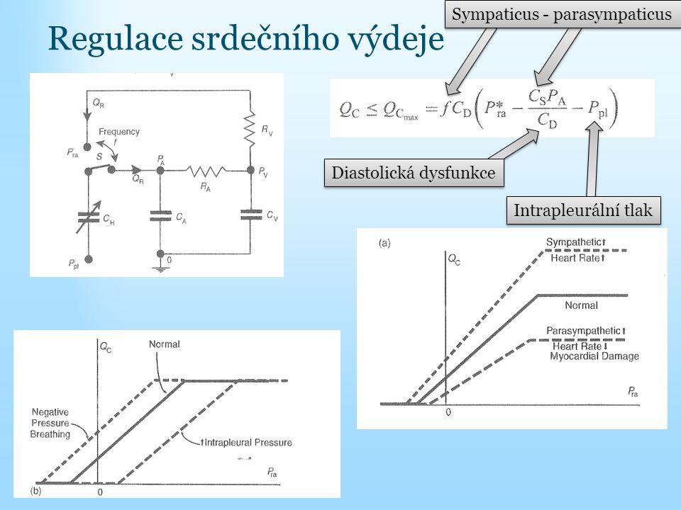 Regulace srdečního výdeje Sympaticus - parasympaticus Diastolická dysfunkce Intrapleurální tlak