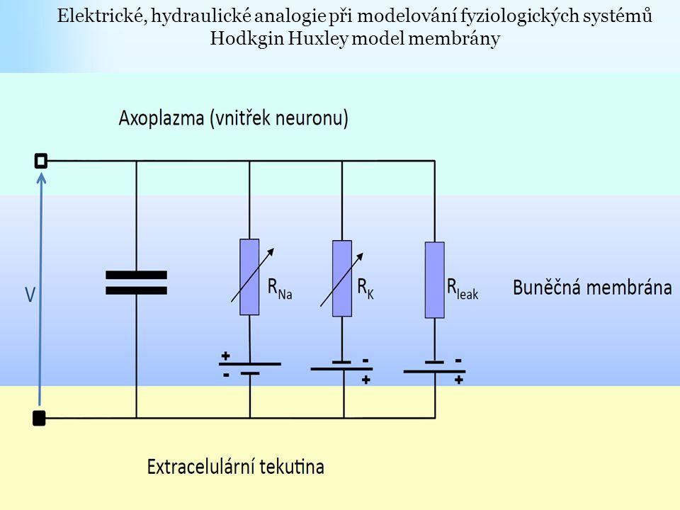 Elektrické, hydraulické analogie při modelování fyziologických systémů Hodkgin Huxley model membrány