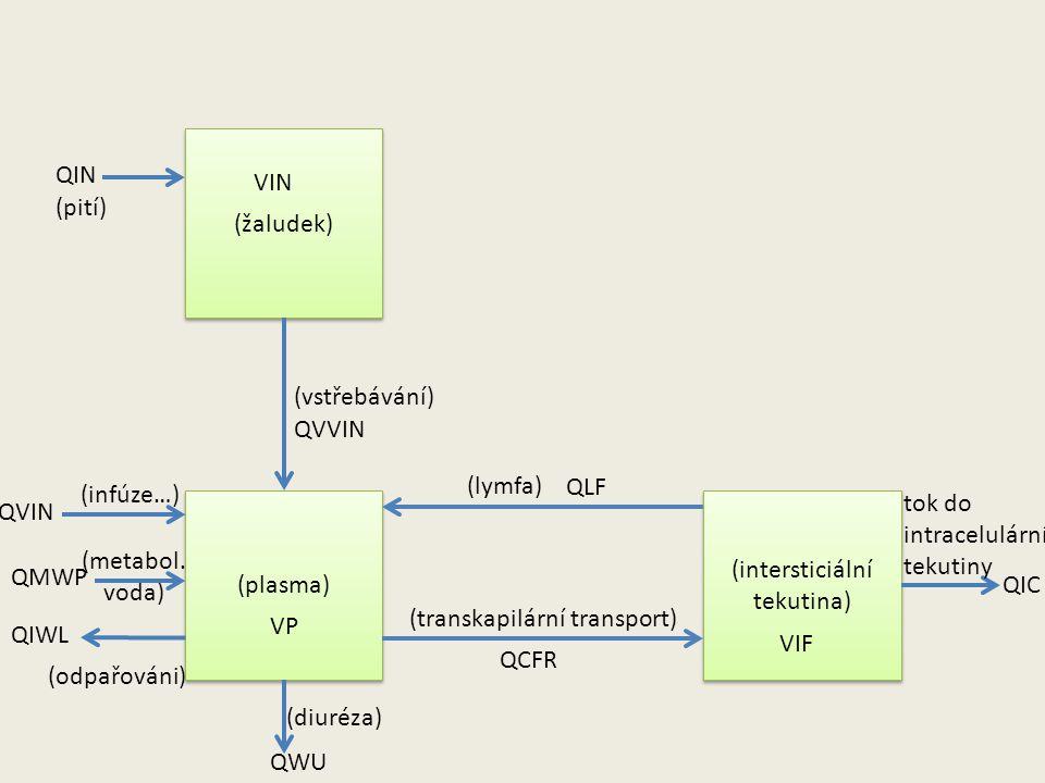 (žaludek) (plasma) (intersticiální tekutina) QIN (pití) (lymfa) (transkapilární transport) QVIN (infúze…) QMWP (metabol.