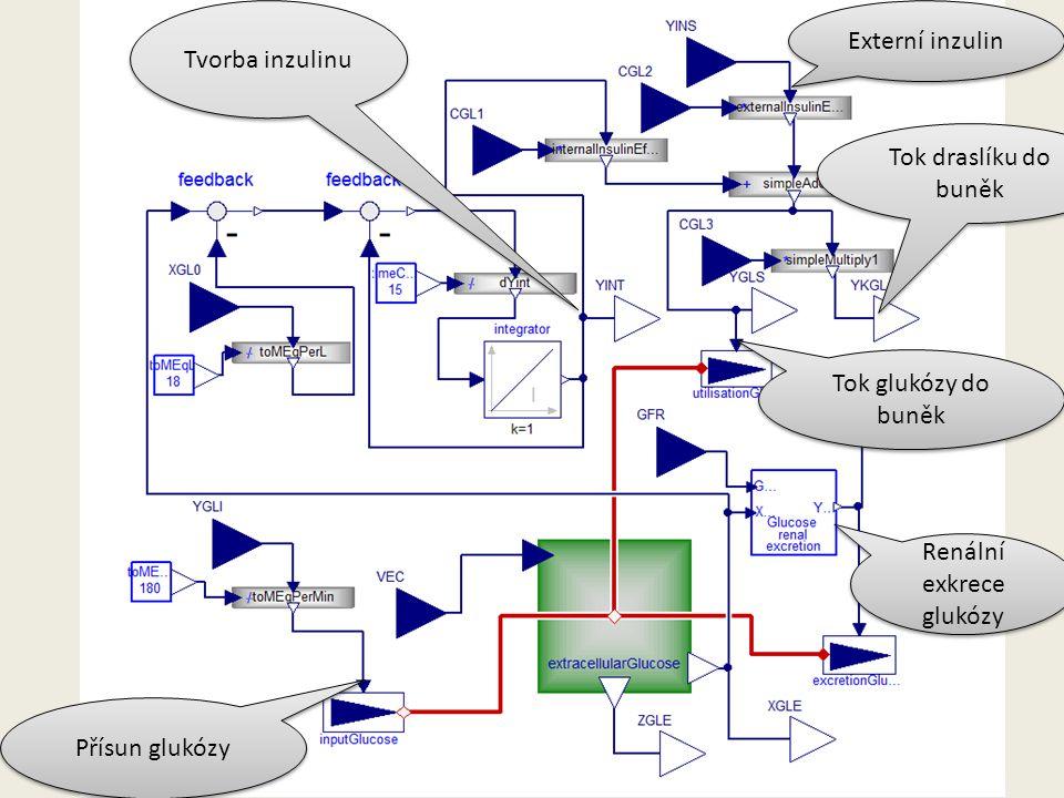 Tvorba inzulinu Externí inzulin Renální exkrece glukózy Tok glukózy do buněk Tok draslíku do buněk Přísun glukózy