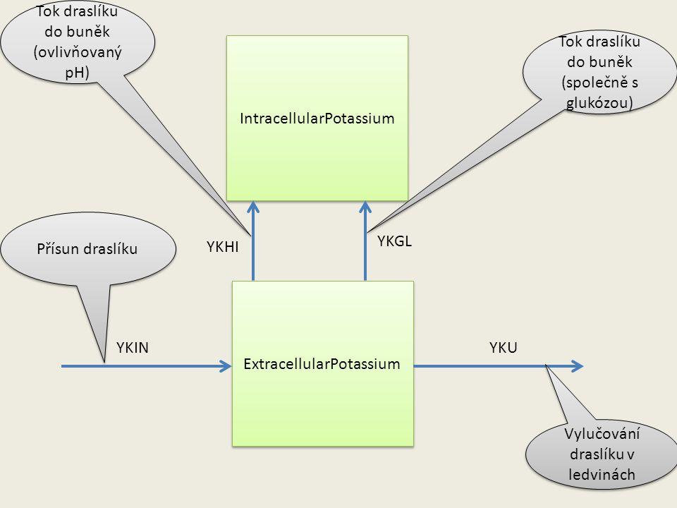 ExtracellularPotassium IntracellularPotassium YKINYKU YKHI YKGL Přísun draslíku Vylučování draslíku v ledvinách Tok draslíku do buněk (ovlivňovaný pH) Tok draslíku do buněk (společně s glukózou)