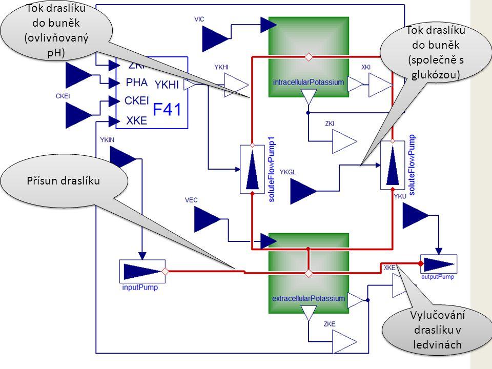 Přísun draslíku Vylučování draslíku v ledvinách Tok draslíku do buněk (ovlivňovaný pH) Tok draslíku do buněk (společně s glukózou)