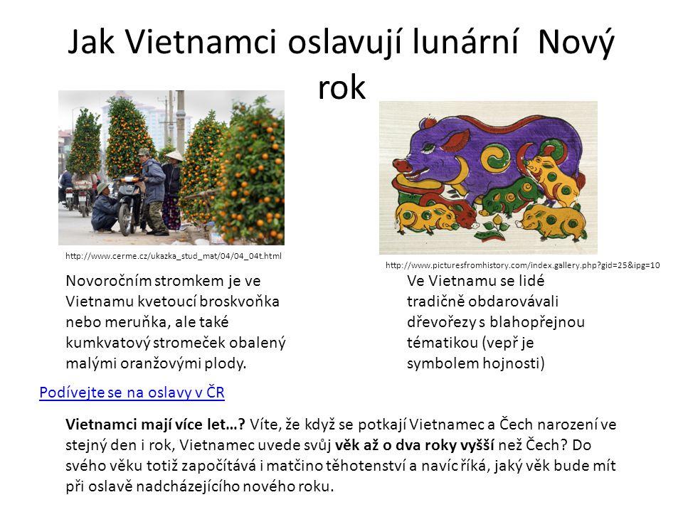 Jak Vietnamci oslavují lunární Nový rok Novoročním stromkem je ve Vietnamu kvetoucí broskvoňka nebo meruňka, ale také kumkvatový stromeček obalený malými oranžovými plody.