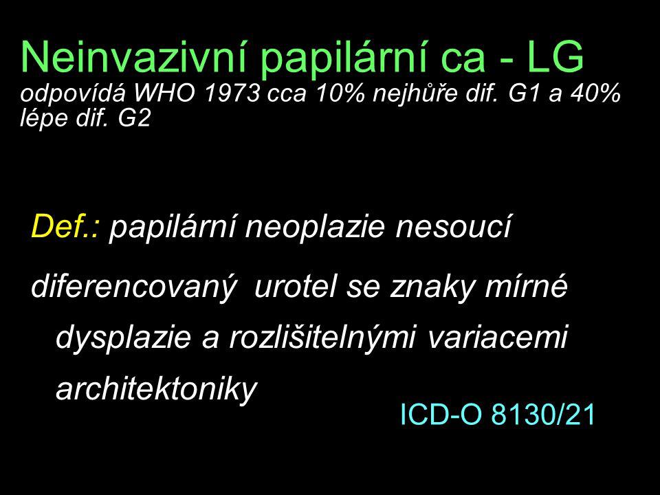 Neinvazivní papilární ca - LG odpovídá WHO 1973 cca 10% nejhůře dif.