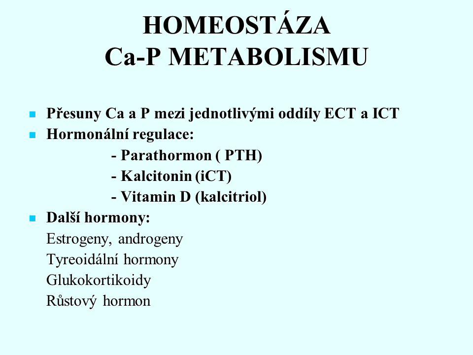 HOMEOSTÁZA Ca-P METABOLISMU Přesuny Ca a P mezi jednotlivými oddíly ECT a ICT Přesuny Ca a P mezi jednotlivými oddíly ECT a ICT Hormonální regulace: H