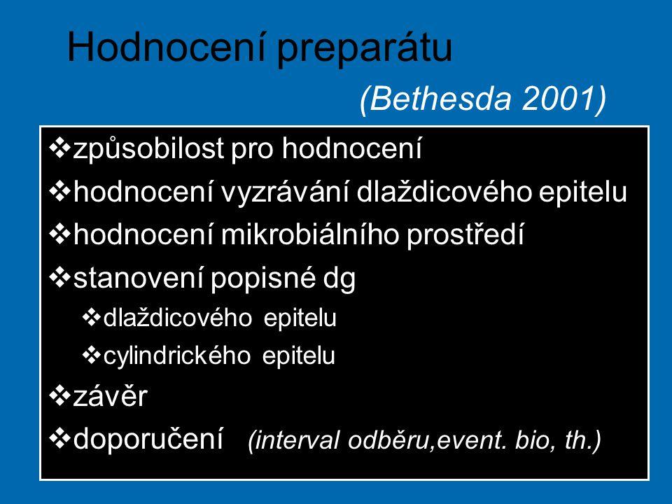 Hodnocení preparátu (Bethesda 2001)  způsobilost pro hodnocení  hodnocení vyzrávání dlaždicového epitelu  hodnocení mikrobiálního prostředí  stanovení popisné dg  dlaždicového epitelu  cylindrického epitelu  závěr  doporučení (interval odběru,event.