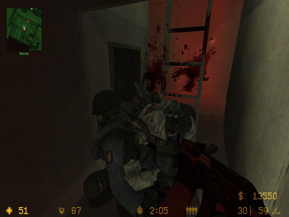 Obě strany používají zbraně z reálného světa, některé mají upravené parametry kvůli hratelnosti (přesnost, typ munice).