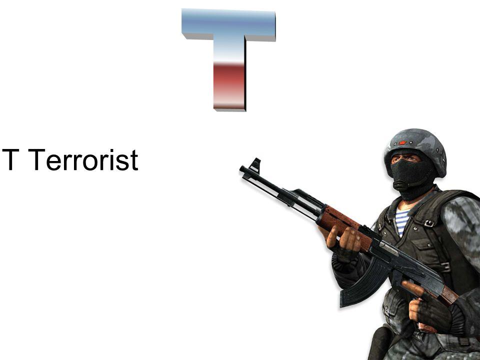 T Terrorist