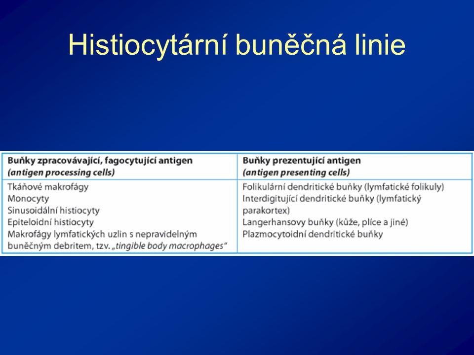 Histiocytární buněčná linie