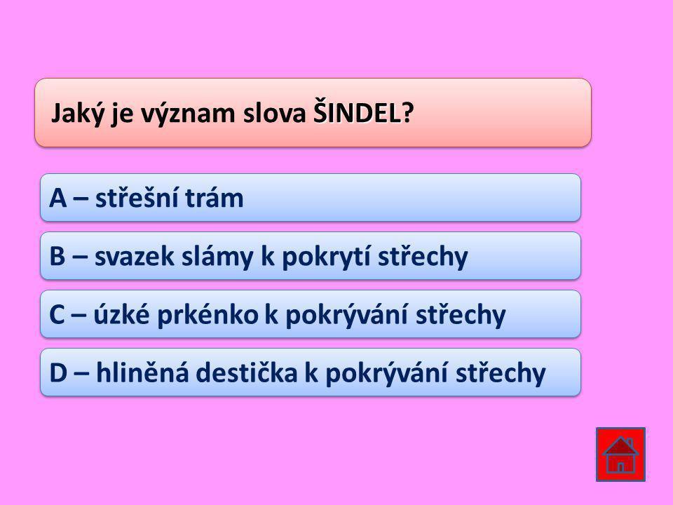 ŠINDEL Jaký je význam slova ŠINDEL.