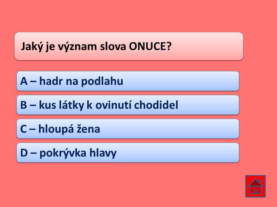 ONUCE Jaký je význam slova ONUCE.