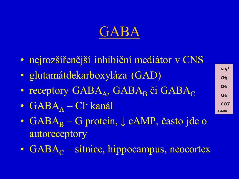 GABA nejrozšířenější inhibiční mediátor v CNS glutamátdekarboxyláza (GAD) receptory GABA A, GABA B či GABA C GABA A – Cl - kanál GABA B – G protein, ↓