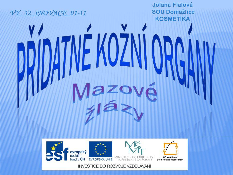 Jolana Fialová SOU Domažlice KOSMETIKA VY_32_INOVACE_01-11