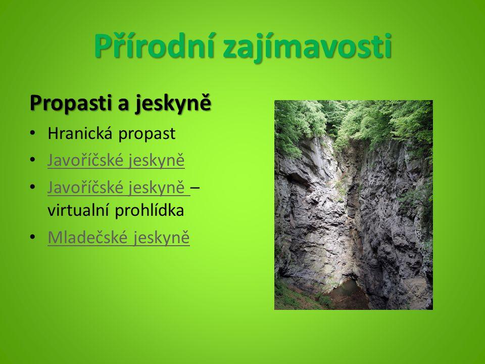 Přírodní zajímavosti Propasti a jeskyně Hranická propast Javoříčské jeskyně Javoříčské jeskyně – virtualní prohlídka Javoříčské jeskyně Mladečské jesk