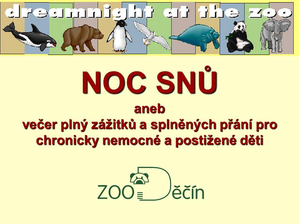 NOC SNŮ aneb večer plný zážitků a splněných přání pro chronicky nemocné a postižené děti