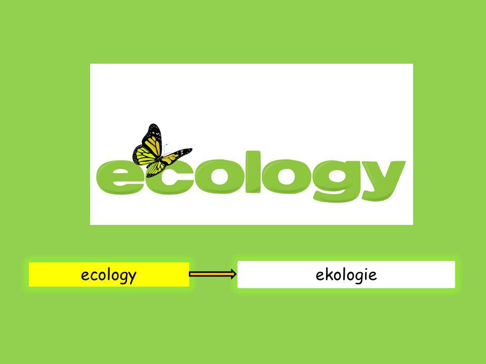 ecology ekologie