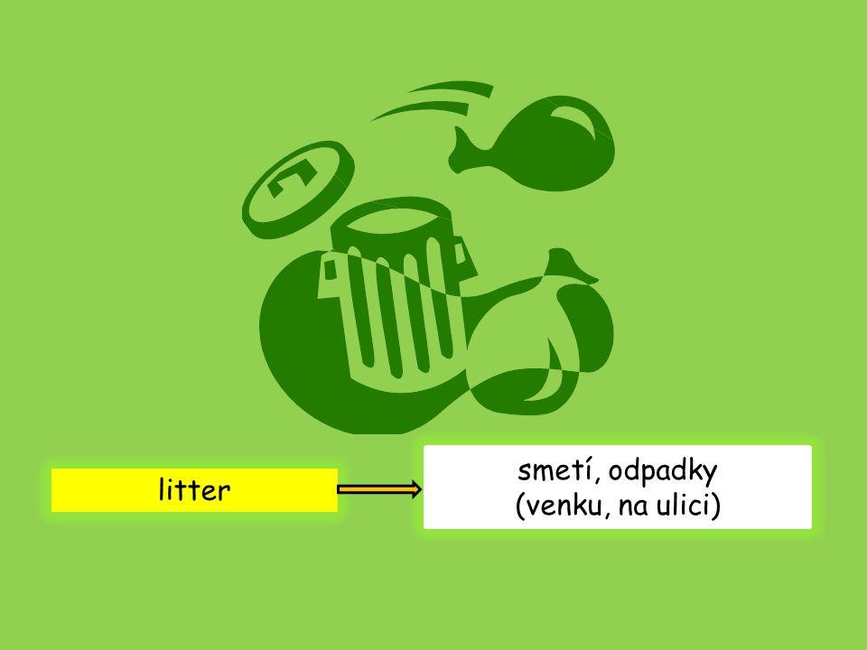 litter smetí, odpadky (venku, na ulici)