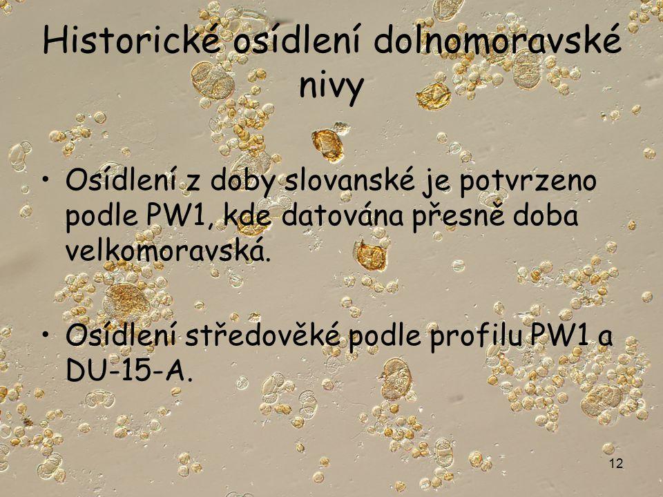 12 Historické osídlení dolnomoravské nivy Osídlení z doby slovanské je potvrzeno podle PW1, kde datována přesně doba velkomoravská.