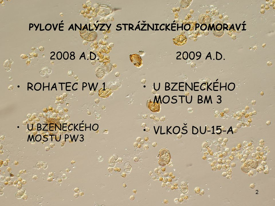 2 PYLOVÉ ANALÝZY STRÁŽNICKÉHO POMORAVÍ 2008 A.D. ROHATEC PW 1 U BZENECKÉHO MOSTU PW3 2009 A.D.