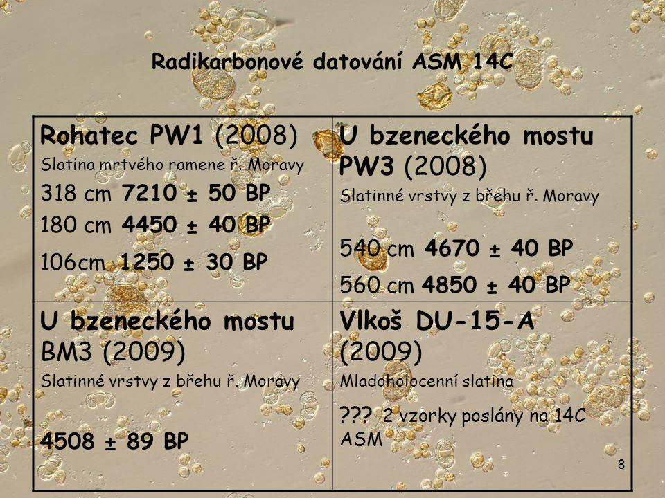 8 Radikarbonové datování ASM 14C Rohatec PW1 (2008) Slatina mrtvého ramene ř.