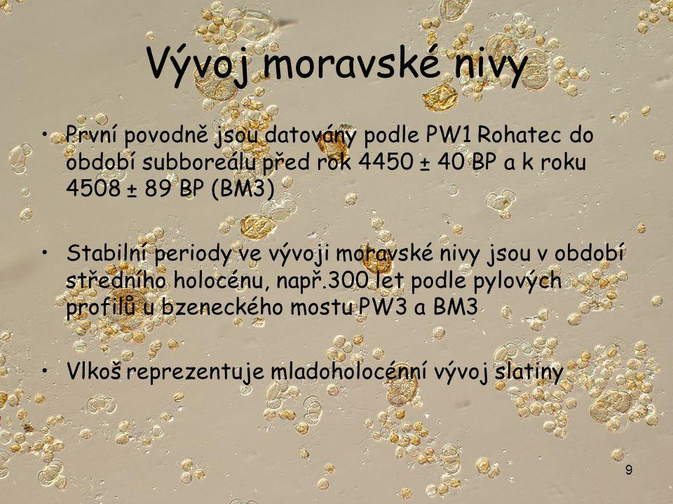 9 Vývoj moravské nivy První povodně jsou datovány podle PW1 Rohatec do období subboreálu před rok 4450 ± 40 BP a k roku 4508 ± 89 BP (BM3) Stabilní periody ve vývoji moravské nivy jsou v období středního holocénu, např.300 let podle pylových profilů u bzeneckého mostu PW3 a BM3 Vlkoš reprezentuje mladoholocénní vývoj slatiny
