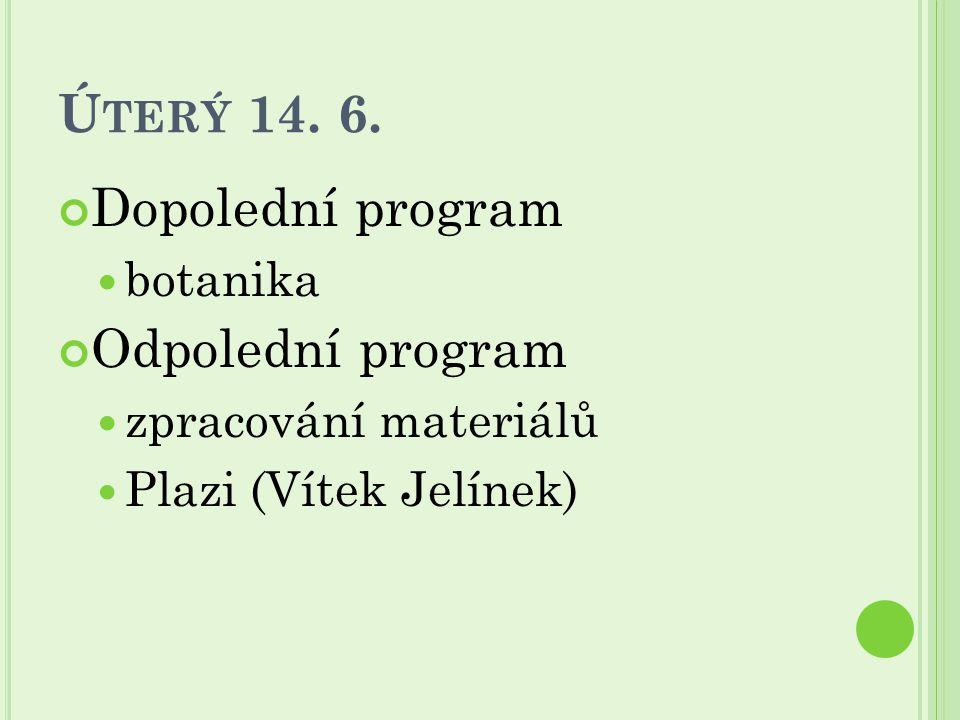 Ú TERÝ 14. 6. Dopolední program botanika Odpolední program zpracování materiálů Plazi (Vítek Jelínek)