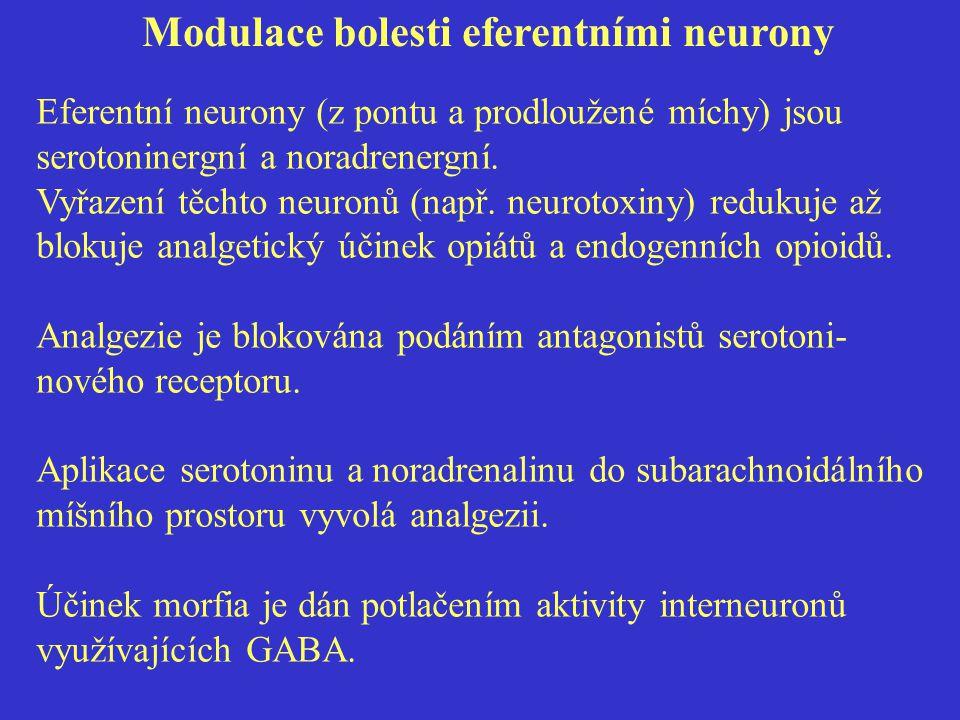 Modulace bolesti eferentními neurony Eferentní neurony (z pontu a prodloužené míchy) jsou serotoninergní a noradrenergní.