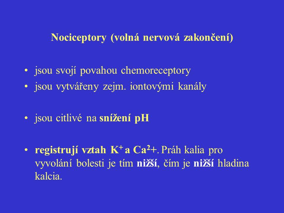 Mediátory působící na volná nervová zakončení různých typů vláken vyvolávající zánět (zvýšená permeabilita kapilár, edém) histamin, bradykinin, serotonin působící přímo na nociceptory kalium, histamin, bradykinin, serotonin senzitizující nociceptory (zvyšující citlivost) prostaglandiny, zejm.