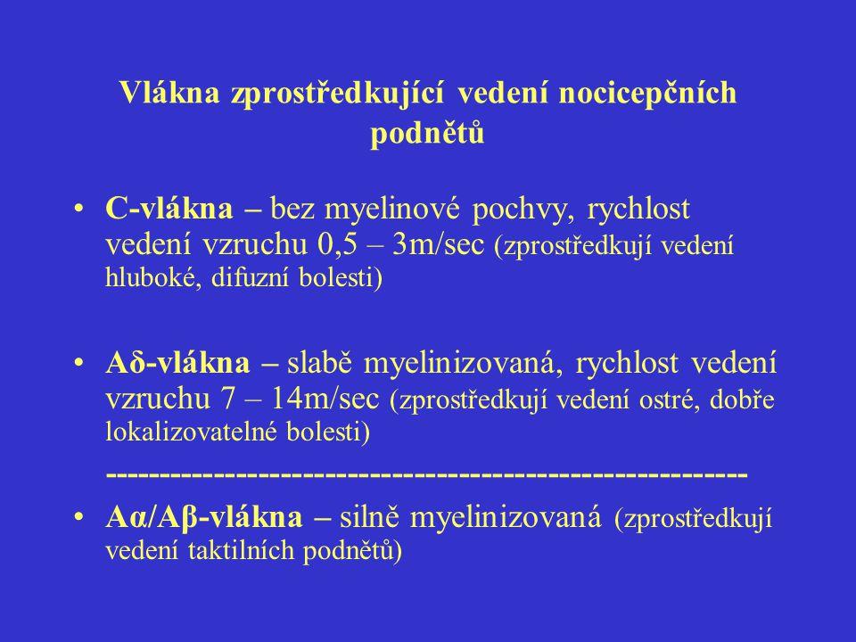 Další typy bolesti II.