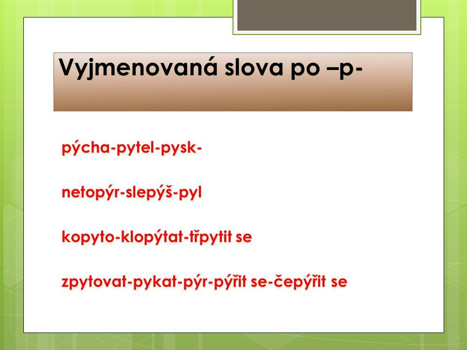 Vyjmenovaná slova po –p- pýcha-pytel-pysk-netopýr-slepýš-pyl kopyto-klopýtat-třpytit se zpytovat-pykat-pýr-pýřit se-čepýřit se