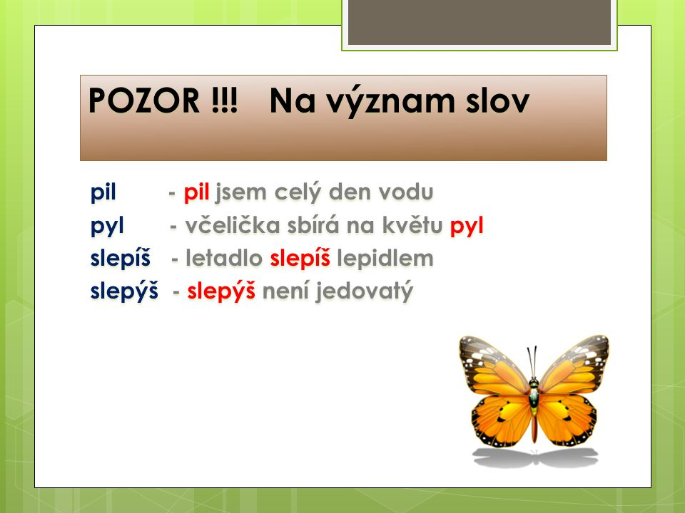 POZOR na význam slov! pil - pil jsem celý den vodu pyl - včelička sbírá na květu pyl slepíš - letadlo slepíš lepidlem slepýš - slepýš není jedovatý PO