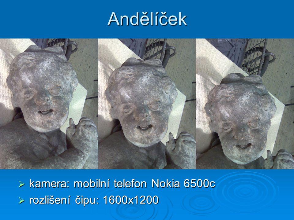 Andělíček  kamera: mobilní telefon Nokia 6500c  rozlišení čipu: 1600x1200