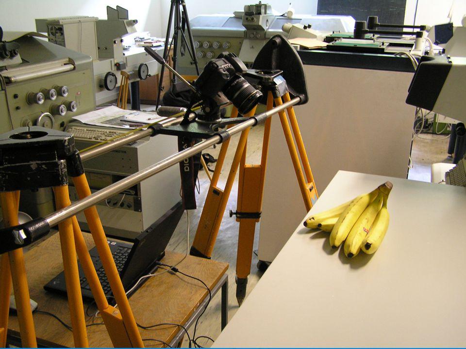 Ukázka 3D modelů  Andělíček  Celý model trsu banánů  Řádek na trsu banánů  Detail banánu