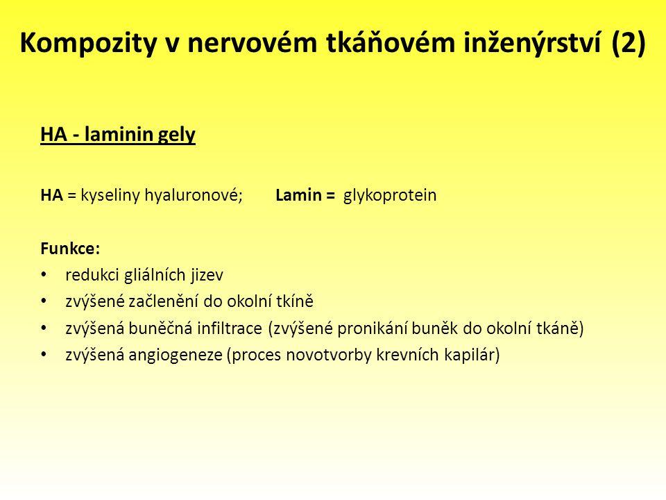 Kompozity v nervovém tkáňovém inženýrství (2) HA - laminin gely HA = kyseliny hyaluronové; Lamin = glykoprotein Funkce: redukci gliálních jizev zvýšen