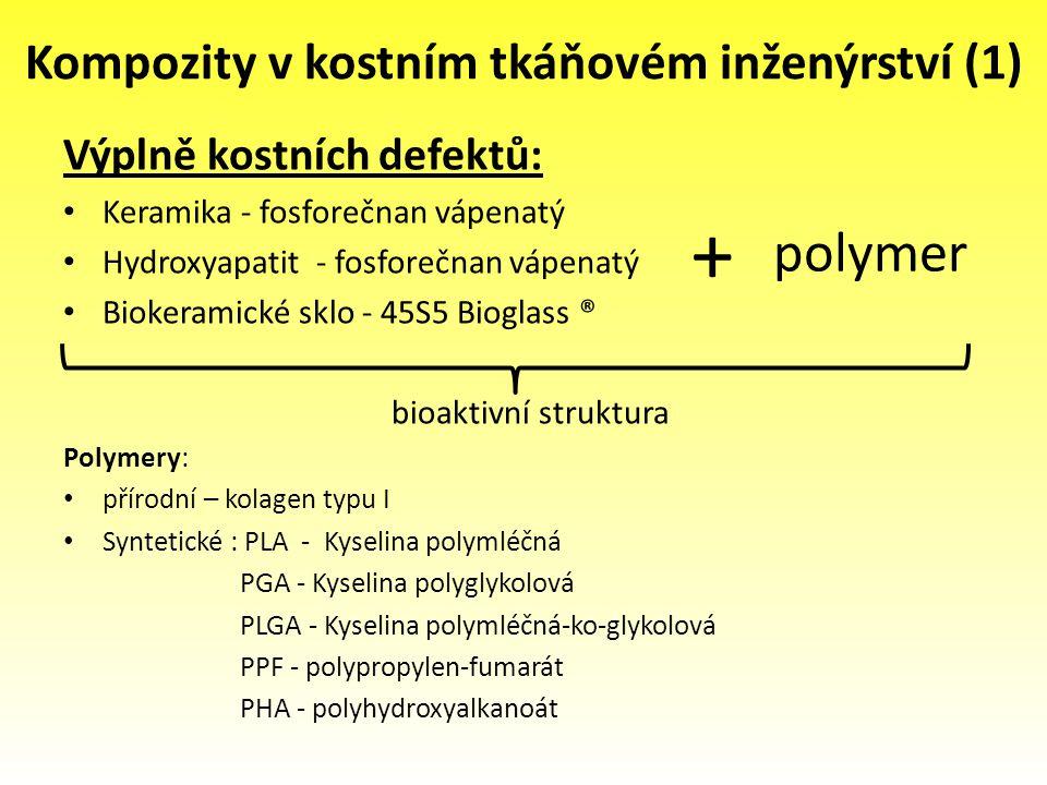 Kompozity v kostním tkáňovém inženýrství (1) Výplně kostních defektů: Keramika - fosforečnan vápenatý Hydroxyapatit - fosforečnan vápenatý Biokeramick